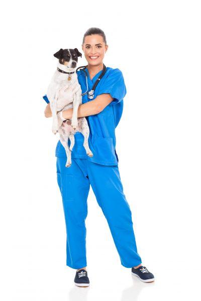 Pretty,Vet,Doctor,Holding,Pet,Dog,Isolated,On,White